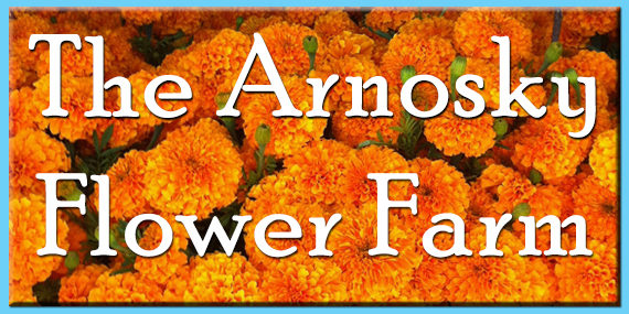 The Arnosky Flower Farm